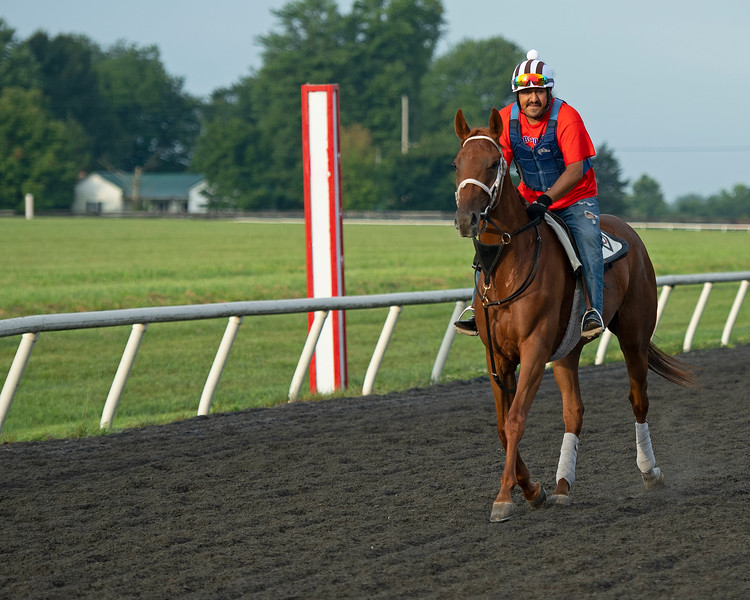 Caption: Midnight Delight coming off track<br /> Trainer Tommy Drury on Aug. 12, 2020 Skylight Training Center in Prospect, KY.