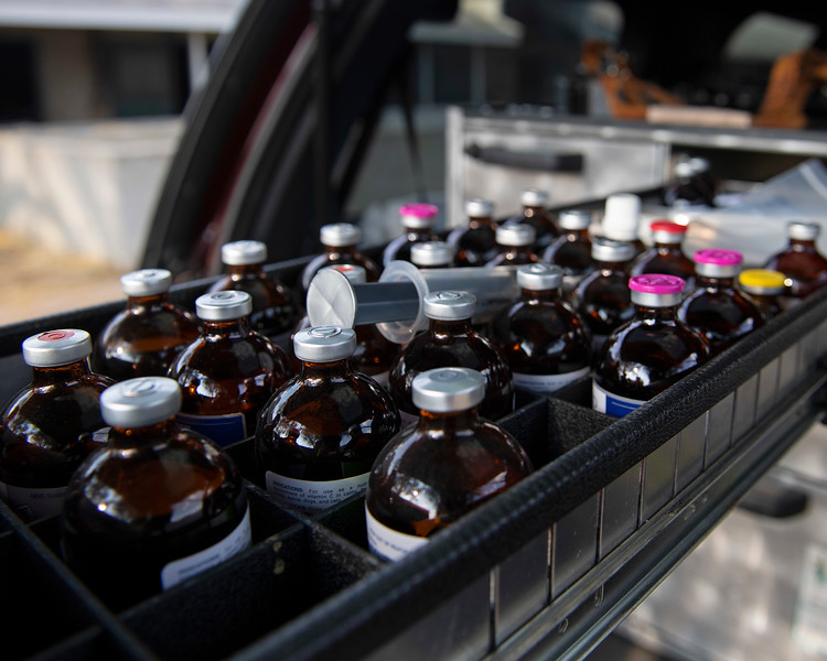 Medications at the racetrack in back of veterinarian's truck