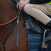 Scene with Declan Carroll and his whip/crop<br /> at Keeneland