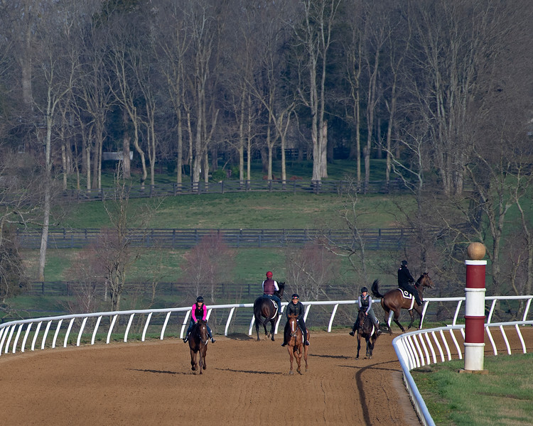 Training at Blackwood Stables  on<br /> March 26, 2020  in Versailles, KY.