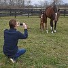 Jamie McDiarmid, behind the scenes, taking photos. The first foal, a filly by Justify from the mare Foreign Affair, was born on Jan. 3, 2020, at Amaroo Farm for owners Audley Farm on Jan. 11, 2020 Amaroo Farm in Lexington, KY.