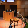 Hip 501 colt by Into Mischief out of Blind Copy from Indian Creek<br /> Fasig-Tipton Selected Yearlings Showcase in Lexington, KY on September 10, 2020.