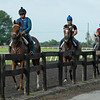 Caption:  Drury horses return to barn after training<br /> Bruce Lunsford at Skylight Training Center with his horse Art Collector and trainer Tommy Drury on Aug. 12, 2020 Skylight Training Center in Prospect, KY.