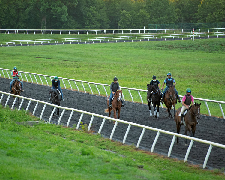 Caption: Heath, left, with next set. <br /> A native of Oklahoma, Heath started working at WinStar Farm on October 10, 2014, and became the farm trainer in October of 2018. Presently he has about 100 horses in training at the WinStar Farm training center, where they have a 7 1/2-furlong main track and 3/4 of a mile undulating turf gallop.<br /> Daily Life series on Destin Heath, farm trainer at WinStar Farm on Aug. 11, 2020 WinStar Farm in Versailles, KY.