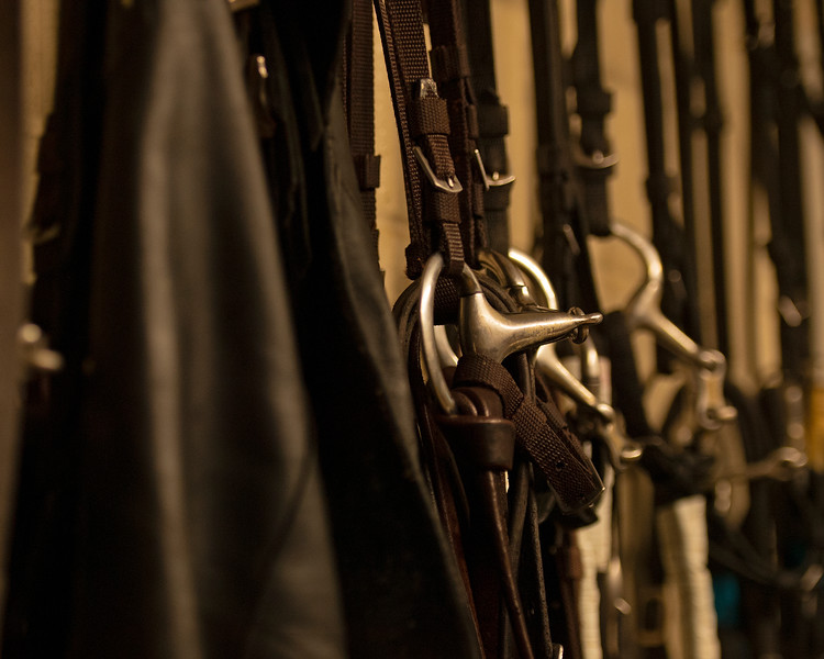 Caption: bits, bridles, chaps<br /> A native of Oklahoma, Heath started working at WinStar Farm on October 10, 2014, and became the farm trainer in October of 2018. Presently he has about 100 horses in training at the WinStar Farm training center, where they have a 7 1/2-furlong main track and 3/4 of a mile undulating turf gallop.<br /> Daily Life series on Destin Heath, farm trainer at WinStar Farm on Aug. 11, 2020 WinStar Farm in Versailles, KY.