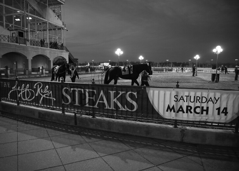 February 15, 2020 scenes at Turfway Park. Photo: Anne M. Eberhardt