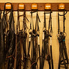 Caption: bridles and bits, and chaps, on left. <br /> A native of Oklahoma, Heath started working at WinStar Farm on October 10, 2014, and became the farm trainer in October of 2018. Presently he has about 100 horses in training at the WinStar Farm training center, where they have a 7 1/2-furlong main track and 3/4 of a mile undulating turf gallop.<br /> Daily Life series on Destin Heath, farm trainer at WinStar Farm on Aug. 11, 2020 WinStar Farm in Versailles, KY.