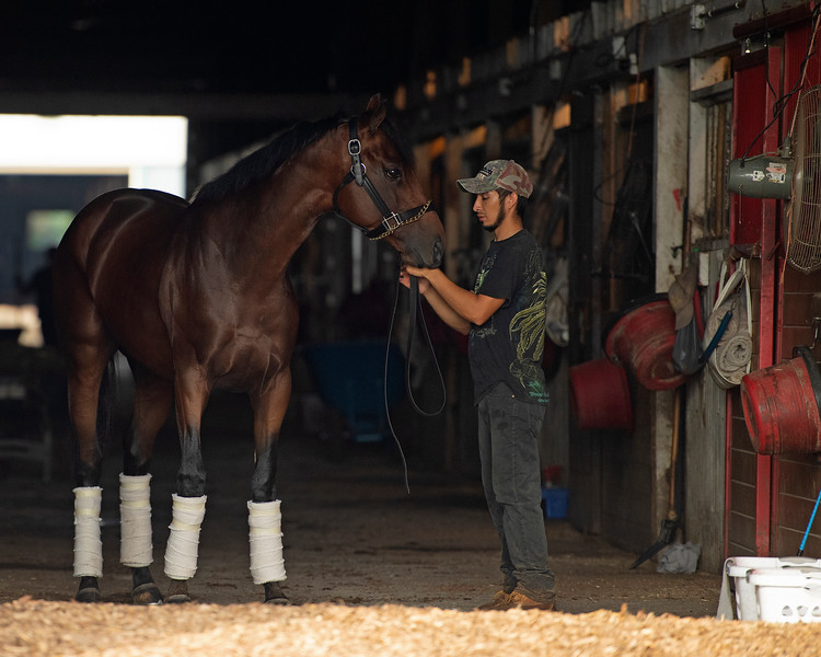 Caption: Art Collector <br /> Bruce Lunsford at Skylight Training Center with his horse Art Collector and trainer Tommy Drury on Aug. 12, 2020 Skylight Training Center in Prospect, KY.