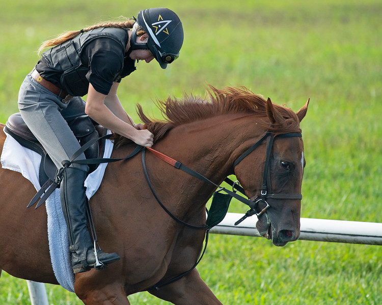 Caption: Page Baker on I Thee Wed<br /> A native of Oklahoma, Heath started working at WinStar Farm on October 10, 2014, and became the farm trainer in October of 2018. Presently he has about 100 horses in training at the WinStar Farm training center, where they have a 7 1/2-furlong main track and 3/4 of a mile undulating turf gallop.<br /> Daily Life series on Destin Heath, farm trainer at WinStar Farm on Aug. 11, 2020 WinStar Farm in Versailles, KY.