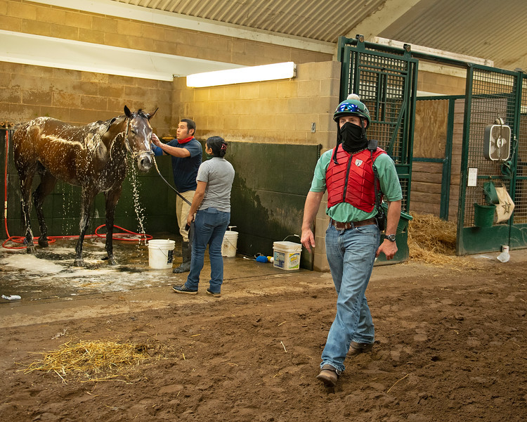 Caption: checking on horses between sets at 7:25 am.<br /> A native of Oklahoma, Heath started working at WinStar Farm on October 10, 2014, and became the farm trainer in October of 2018. Presently he has about 100 horses in training at the WinStar Farm training center, where they have a 7 1/2-furlong main track and 3/4 of a mile undulating turf gallop.<br /> Daily Life series on Destin Heath, farm trainer at WinStar Farm on Aug. 11, 2020 WinStar Farm in Versailles, KY.