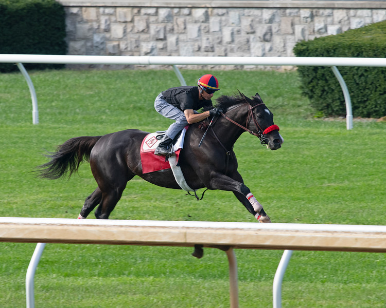Next Shares<br /> at Keeneland