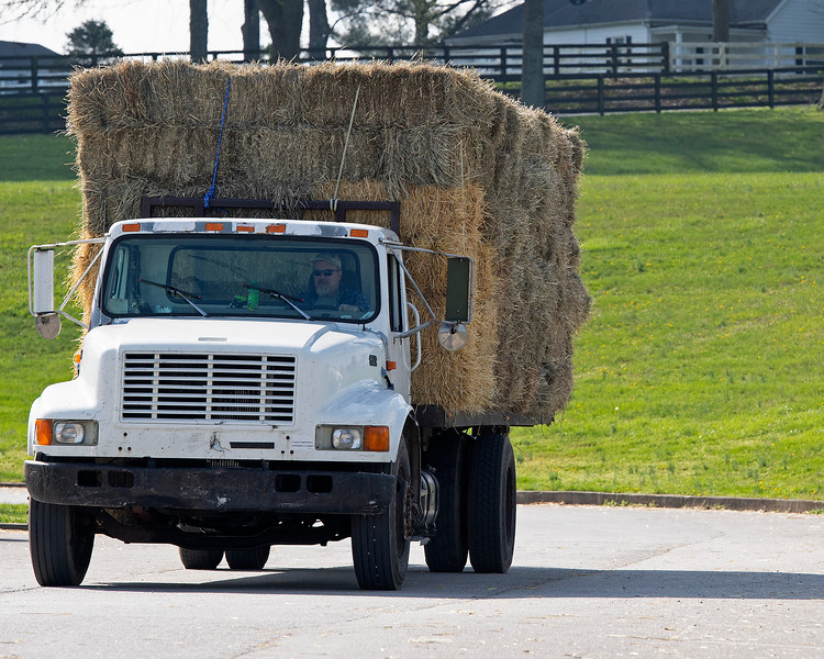 Caption: Essentials, Hay and Straw delivered to Rice Road barn area<br /> Behind the Scenes at Keeneland during Covid19 virus and the people, horses, and essentials needed to take care of race horses on April 2, 2020 Keeneland in Lexington, KY.