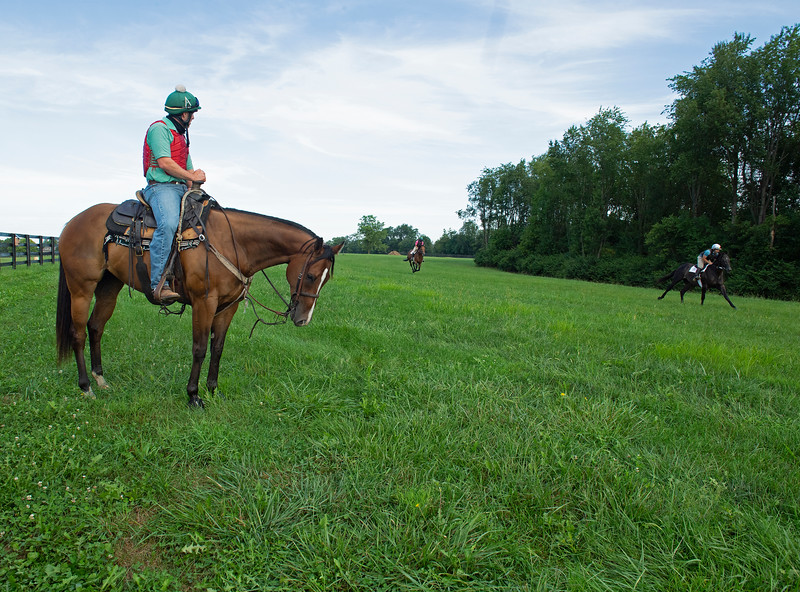 Caption: (L-R): Destin on Fred, Brazillionaire with Mike Heath and Outerbanks with Dennis Nobles <br /> A native of Oklahoma, Heath started working at WinStar Farm on October 10, 2014, and became the farm trainer in October of 2018. Presently he has about 100 horses in training at the WinStar Farm training center, where they have a 7 1/2-furlong main track and 3/4 of a mile undulating turf gallop.<br /> Daily Life series on Destin Heath, farm trainer at WinStar Farm on Aug. 11, 2020 WinStar Farm in Versailles, KY.