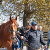 Vino Rosso at<br /> Spendthrift<br /> on  Nov. 8, 2019 Spendthrift in Lexington, KY.