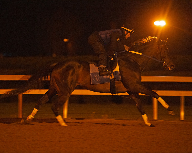 Caption: working with Juan Vargas<br /> Midnight Bisou at Keeneland on May 2, 2020 Keeneland in Lexington, KY.