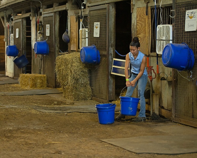 Caption: student Camille Hargrove filling up water buckets<br /> BCTC equine school and NARA in Lexington, Ky., and Thoroughbred Training Center, on July 6, 2020 BCTC in Lexington, KY.
