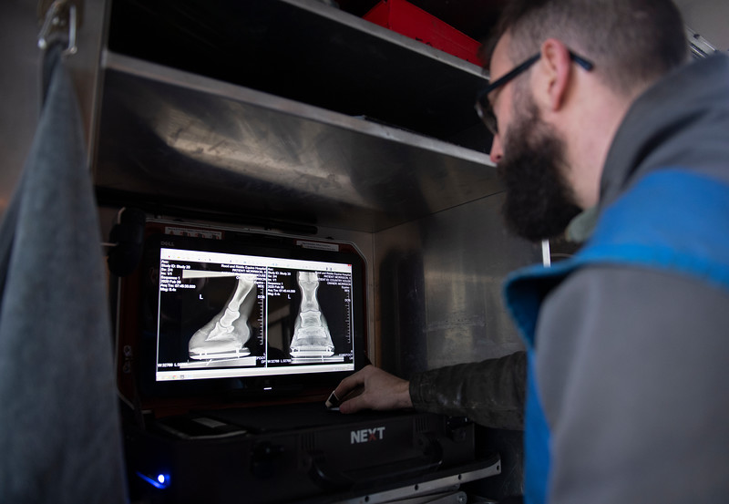 Country House xrays taken today are reviewed by Shawn Morrell DVM iat Blackwood Stables on<br /> Feb. 28, 2020 Blackwood Stables in Versailles, KY.