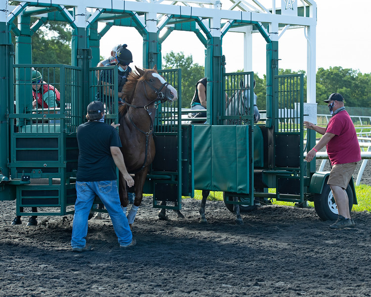 Caption:  (L-R): Alvaro Quinteros on Warrant learns to break from the gate with Destin watching from behind stall., and 2018 Winterwonderland with Jesslyn (Jess) Woodall<br /> A native of Oklahoma, Heath started working at WinStar Farm on October 10, 2014, and became the farm trainer in October of 2018. Presently he has about 100 horses in training at the WinStar Farm training center, where they have a 7 1/2-furlong main track and 3/4 of a mile undulating turf gallop.<br /> Daily Life series on Destin Heath, farm trainer at WinStar Farm on Aug. 11, 2020 WinStar Farm in Versailles, KY.