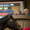 announcer Michael Wrona<br /> Keeneland January sales at Keeneland in Lexington, Ky., on January 7, 2019.