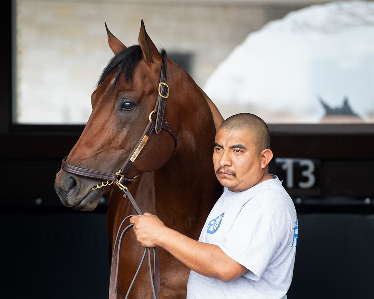 Noble Commander schooling<br /> Matt Carrouthers and Keeneland scenes at Keeneland on April 11, 2019 in Lexington,  Ky.