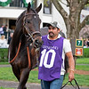 Dabo owned by Tom Hammond and West Point Thoroughbred at Keeneland on April 12, 2019 in Lexington,  Ky.