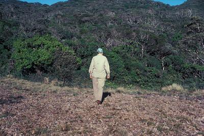 BetsyH. Gagné at Greensword Bog 17September1981; photo by ArtMedeiros (photoID:bhg002029)