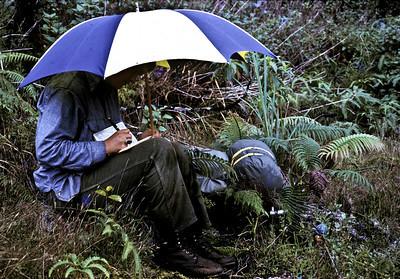 Writing in the rain, Waino'i; photo developed August1972 (photoID:bhg002046)