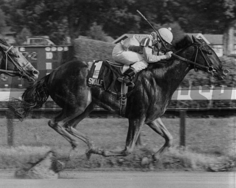 Swale wins the Grade II Saratoga Special<br /> Photo by: Bob Coglianese