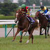 Orfevre wins the Takarazuka Kinen, a Breeders Cup Challenge race for the Breeders Cup Turf.<br /> Photo by: Kate Hunter