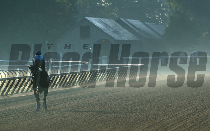 Somebody ridden by Julio Salas and trained by H. James Bond is the first horse to take to the Oklahoma Training Center track as it opens for the first time this season Thursday June 4, 2020 in Saratoga Springs, N.Y.  Photo by Skip Dickstein