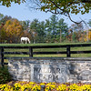 Waldorf Farm  Saturday Oct. 10, 2020 in North Chatham, N.Y.   Photo by Skip Dickstein