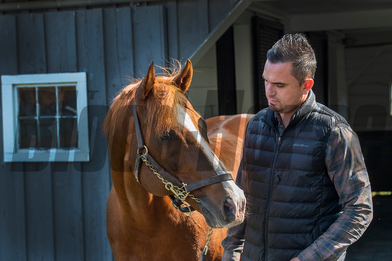 Waldorf Farm manager Kenny Toye with works with stallion Bustin Stones Saturday Oct. 10, 2020 in North Chatham, N.Y.   Photo by Skip Dickstein