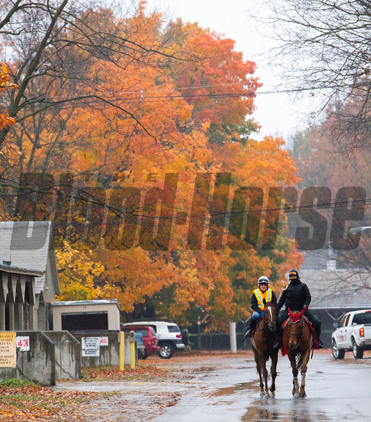 Second of July with former jockey Robbie Davis returns from his breeze at the Oklahoma Training Center Wednesday Oct. 28, 2020 in Saratoga Springs< N.Y.   Photo by Skip Dickstein