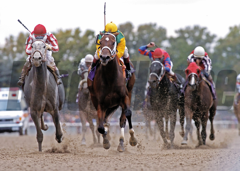 Folklore wins the Breeders' Cup Juvenile Fillies
