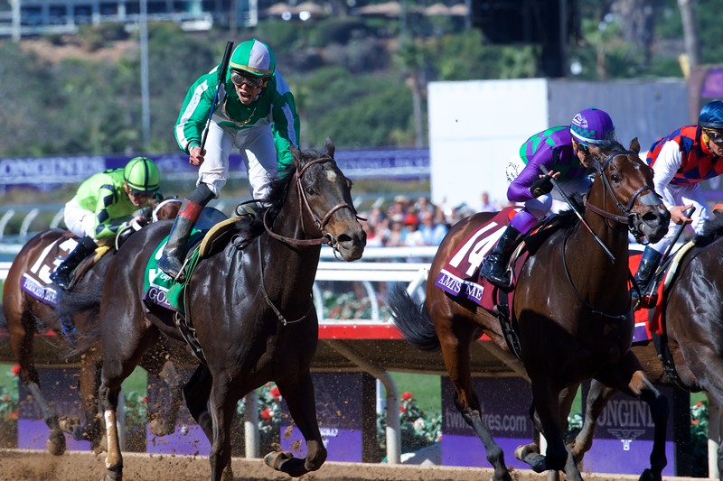 Bar of Gold wins the Breeders Cup Filly and Mare Sprint on November 4, 2017. Photo by Skip Dickstein.