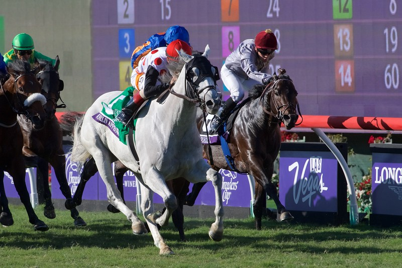 World Approval wins the Breeders Cup Mile on November 4, 2017. Photo by Skip Dickstein.