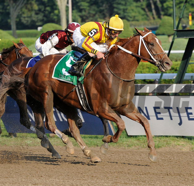 PHOTO BY SKIP DICKSTEIN -  Curlin with jockey Robby Albarado in the irons conquered a field of six other horses to win the 55th running of The Woodward Stakes at the Saratoga Race Course in Saratoga Springs, New York August 30, 2008.