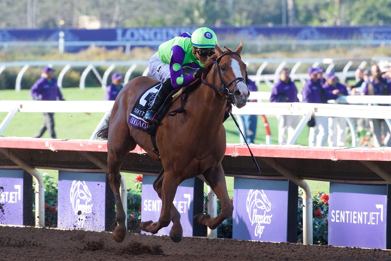 Good Magic wins with Breeders Cup Juvenile on November 4, 2017. Photo by Skip Dickstein.