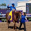 Wuheida wins the Breeders Cup Filly and Mare Turf on November 4, 2017. Photo by Anne Eberhardt.
