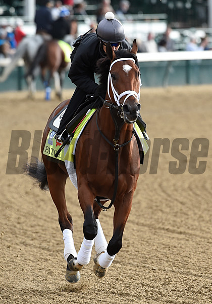 Patch gallops at Churchill Downs May 3, 2017 in Louisville, KY.  Photo by Skip Dickste