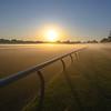 A fog blankets the track before the horses go out to gallop at the Oklahoma Training Center track as it opens for the first time this season Thursday June 4, 2020 in Saratoga Springs, N.Y.  Photo by Skip Dickstein