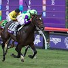 Rushing Fall wins the Breeders Cup Juvenile Fillies Turf at Del Mar on November 3, 2017. Photo by Skip Dickstein.