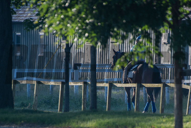 A horse trained by H. James Bond walks down the lane leading to the Oklahoma Training Center track as it opens for the first time this season Thursday June 4, 2020 in Saratoga Springs, N.Y.  Photo by Skip Dickstein