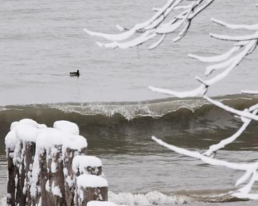 20080206_28823 Winter Lake