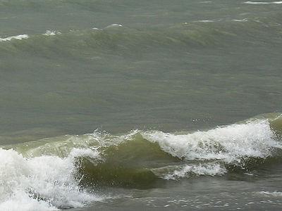 0677 Wave