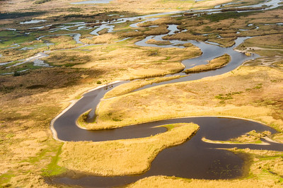 HighLight_Nelson_045_090