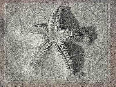 Starfish Mystery