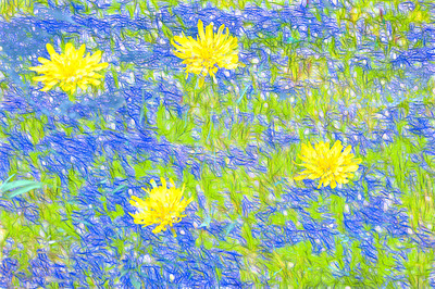 Blue and Yellow Love