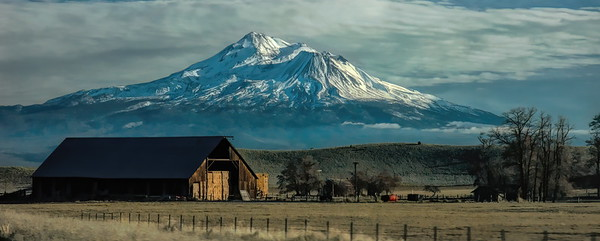 Winter and Shasta
