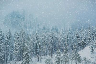 Winter Come To Cascades
